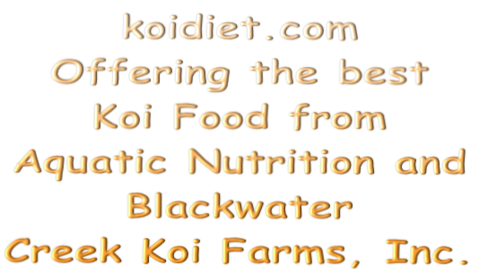 koidiet.com Offering the best  Koi Food from  Aquatic Nutrition and  Blackwater  Creek Koi Farms, Inc.