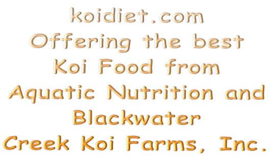 koidiet.com